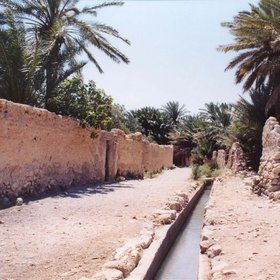 Irrigation channel in the Palmyra oasis