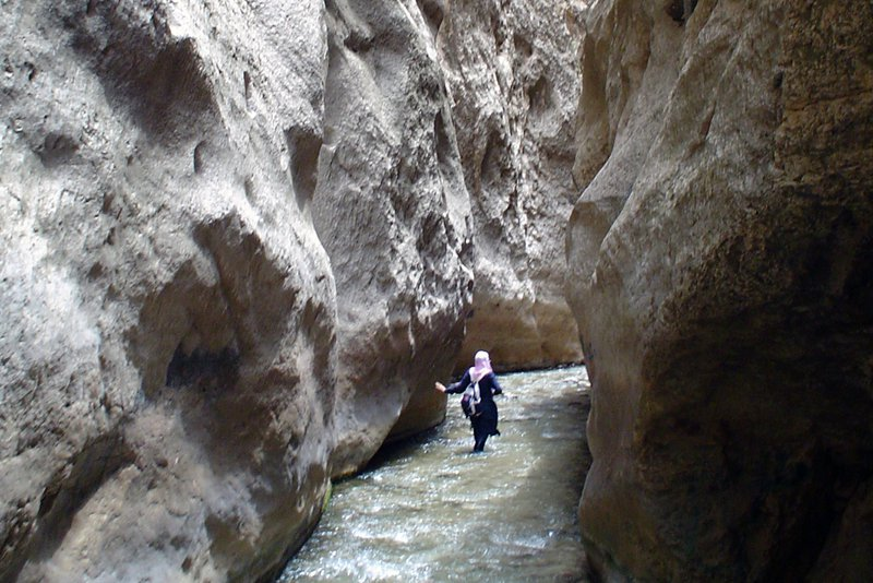 Geologist And River Valley