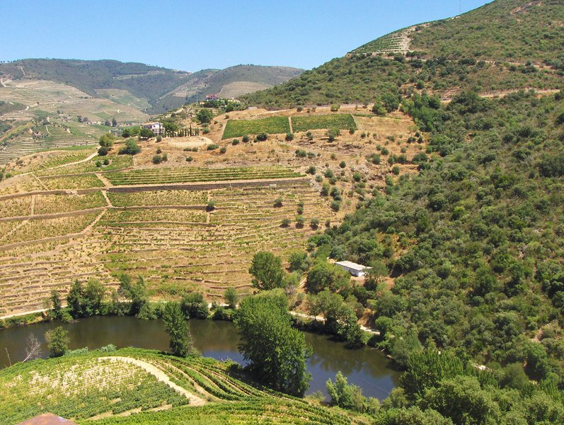 Demarcated Region of Douro: a World Heritage Site