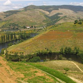 The Multi-functionality of the Port Wine Region Landscapes