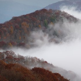 Great Smoky Mountains morning fog and fall foliage October 2009
