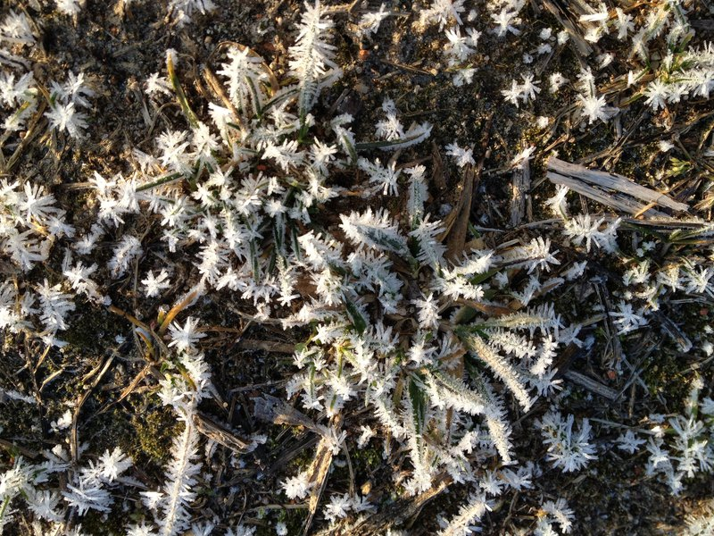 Crystalline frost