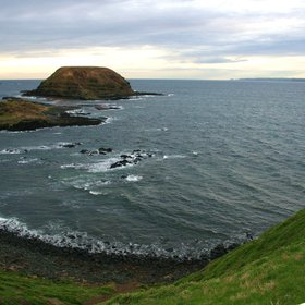 The Nobbies (Phillip Island)