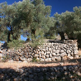 Drystone walls for soil conservation (1)