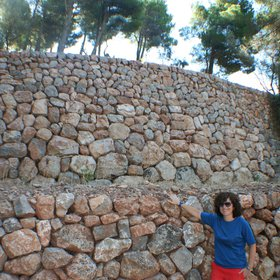 Drystone walls for soil conservation (2)