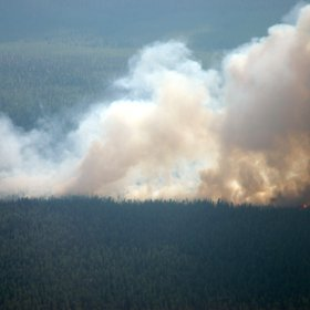Taïga burning near Krasnoiarsk