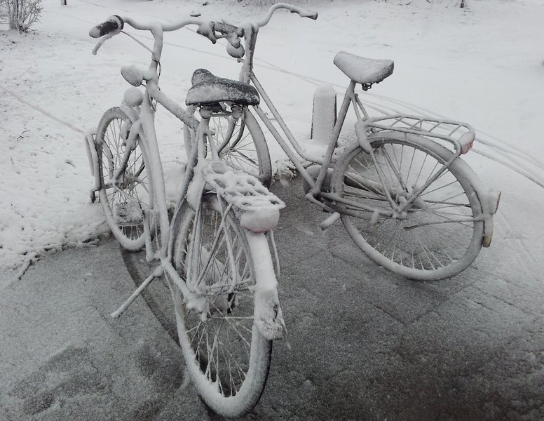 Cycle in snow