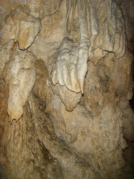 The claw, Lazaru Cave, Romania