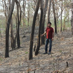 Kukrail Degraded forest