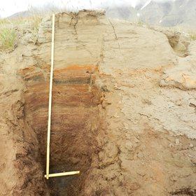 Peat-loess sequence, Svalbard
