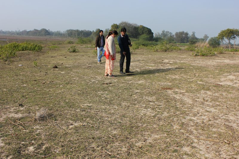 Abandoned land in Lucknow