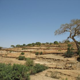Landscape of northern Tigray, Ethiopia