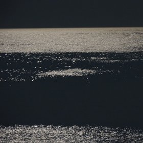 Sea lit by full moon