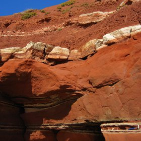 Red triassic sandstone (East Devon)