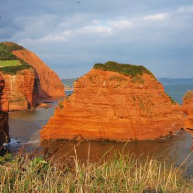 Triassic sandstone (Sidmouth)