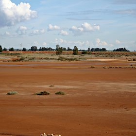 Salt marshland in Moguer (Huelva, SW Spain)