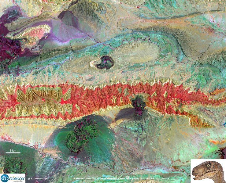 A velociraptor in the Zagros fold and thrust belt