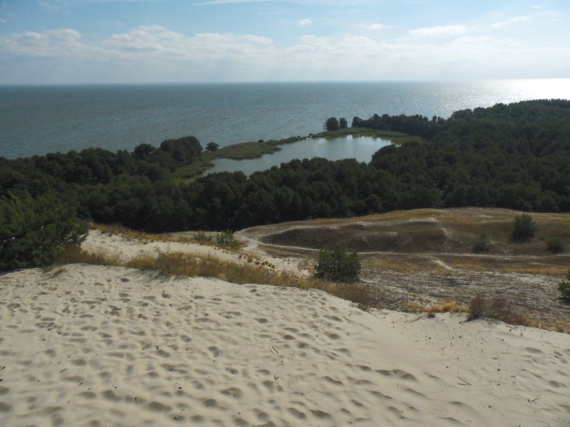 The world of sand, wind, forest and water