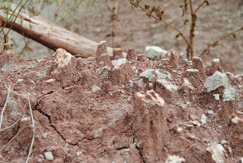 Soil stands up