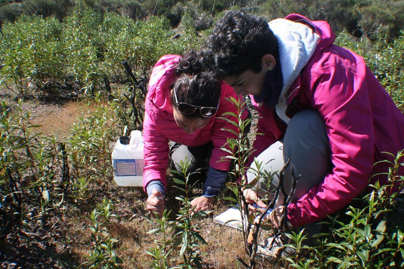 Soil scientists in action: Nancy and Eli