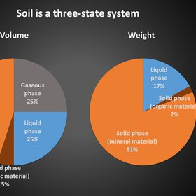 Soil is a 3-state system