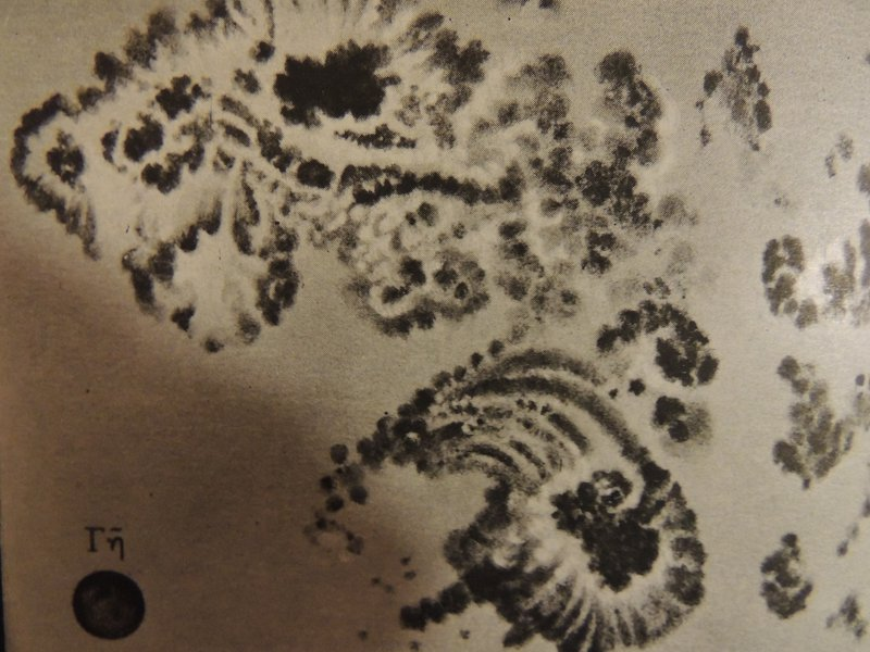 Sunspot drawing from 1894