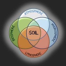 Soil in the interface