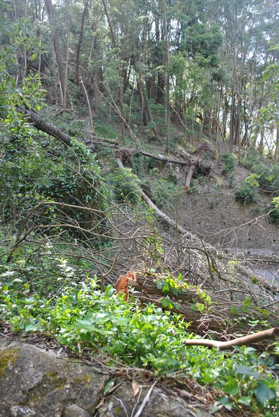 after the strom in Sintra 2013
