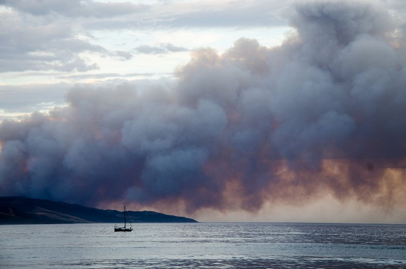 The many sides of Australia's bushfires