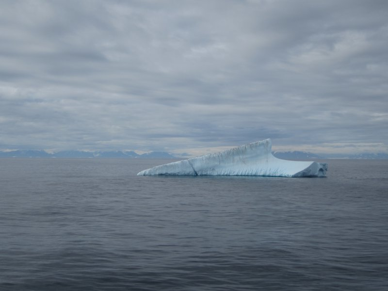 Iceberg in front of the biggest fjord in the World