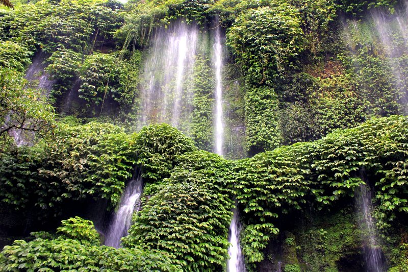 A mini green wall in Central Lombok, Indonesia