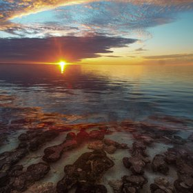 Stromatolites by Sunset