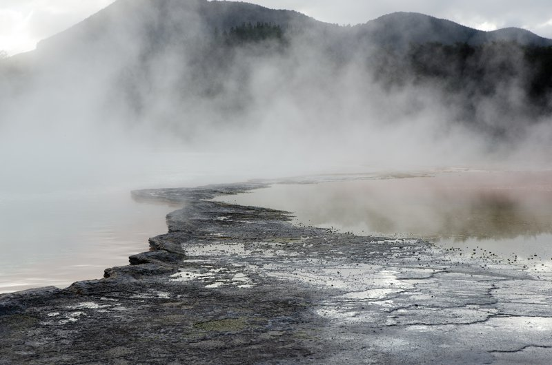 Steaming Earth (Warakei geothermal valley, New Zealand)