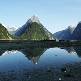 Reflections at Piopiotahi