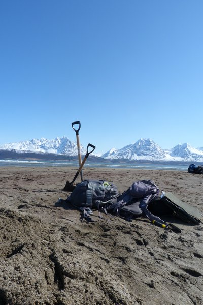 Digging in the Arctic