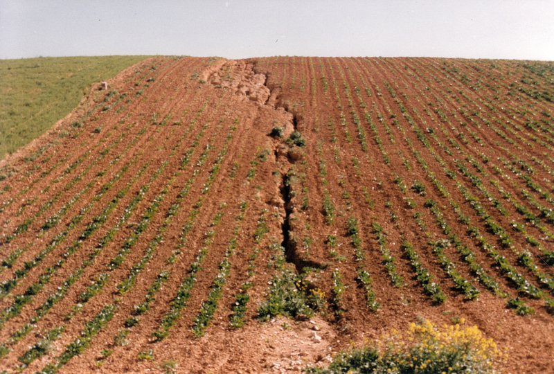 Crack in agricultural land