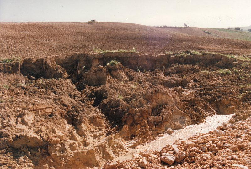 Collapsed walls of a gully near Arcos de la Frontera (SW Spain)