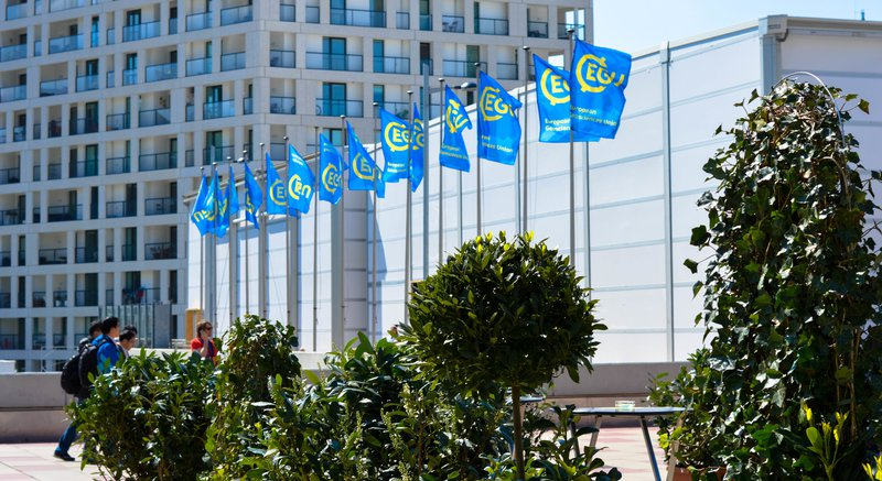 EGU17 - Flags at EGU General Assembly 2017