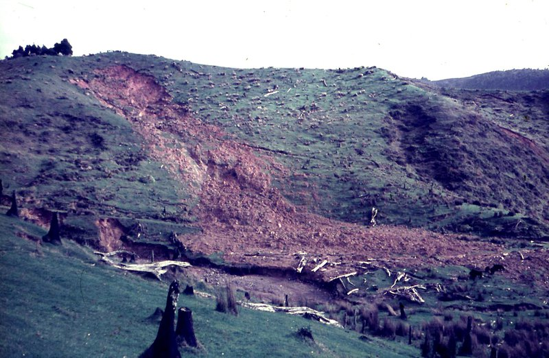 Debris avalanche on weathered greywacke