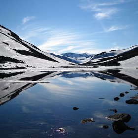 Norwegian summer mirror
