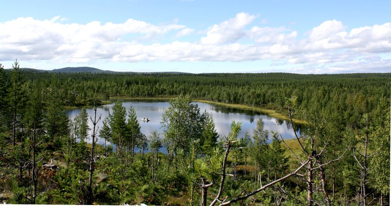 Field work in a small boreal lake