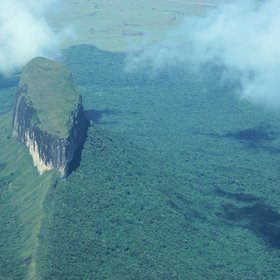 Tepui in the Roraima massif