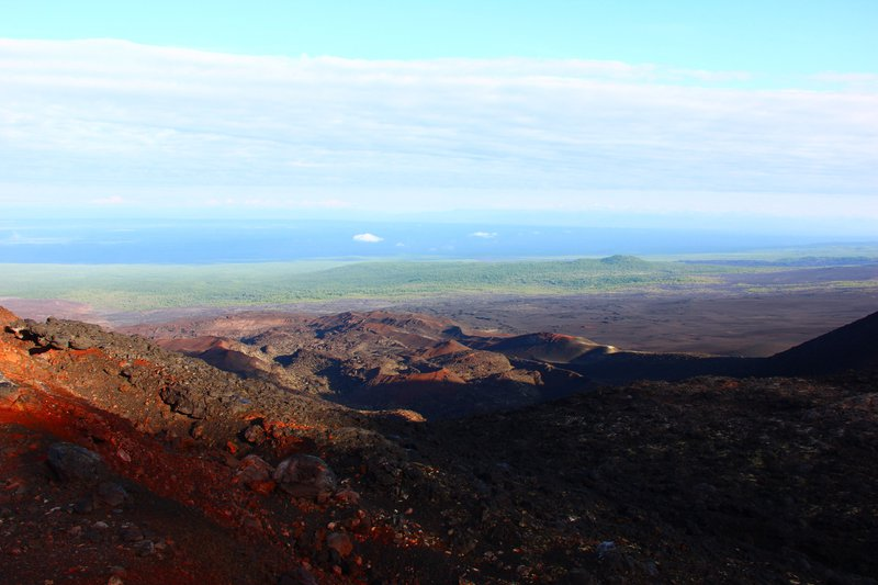 View on the border of the forest and volcano's lava zone from the top of 2nd Scoria Cone