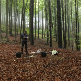 Soil sampling in Outer Western Carpathians