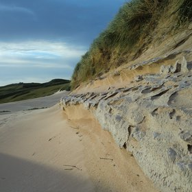 Dune at the interplay of erosion and stabilization