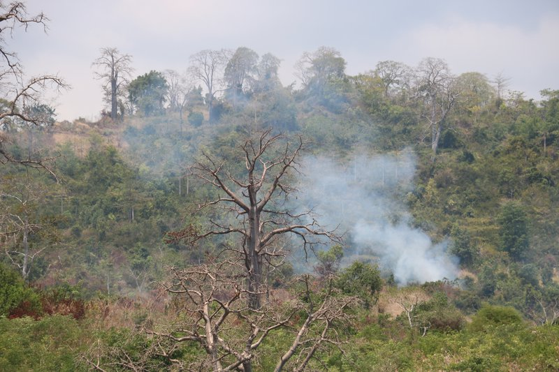 Small-scale burning in São Tomé