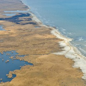 Beautiful images from Danube Delta