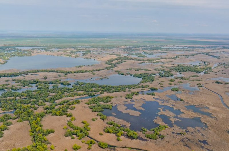 Beautiful image from Danube Delta
