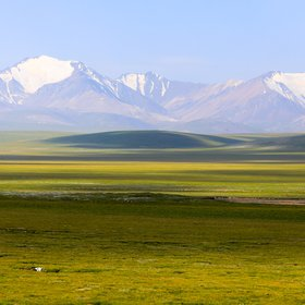 Meadow in Qilian Mountain, China