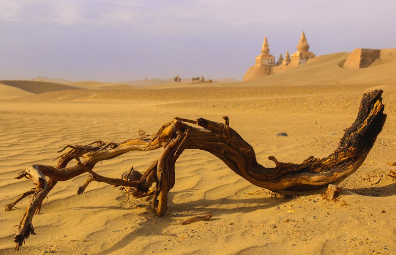 A Lost City, Ejin, Alxa, Inner Mongolia, China